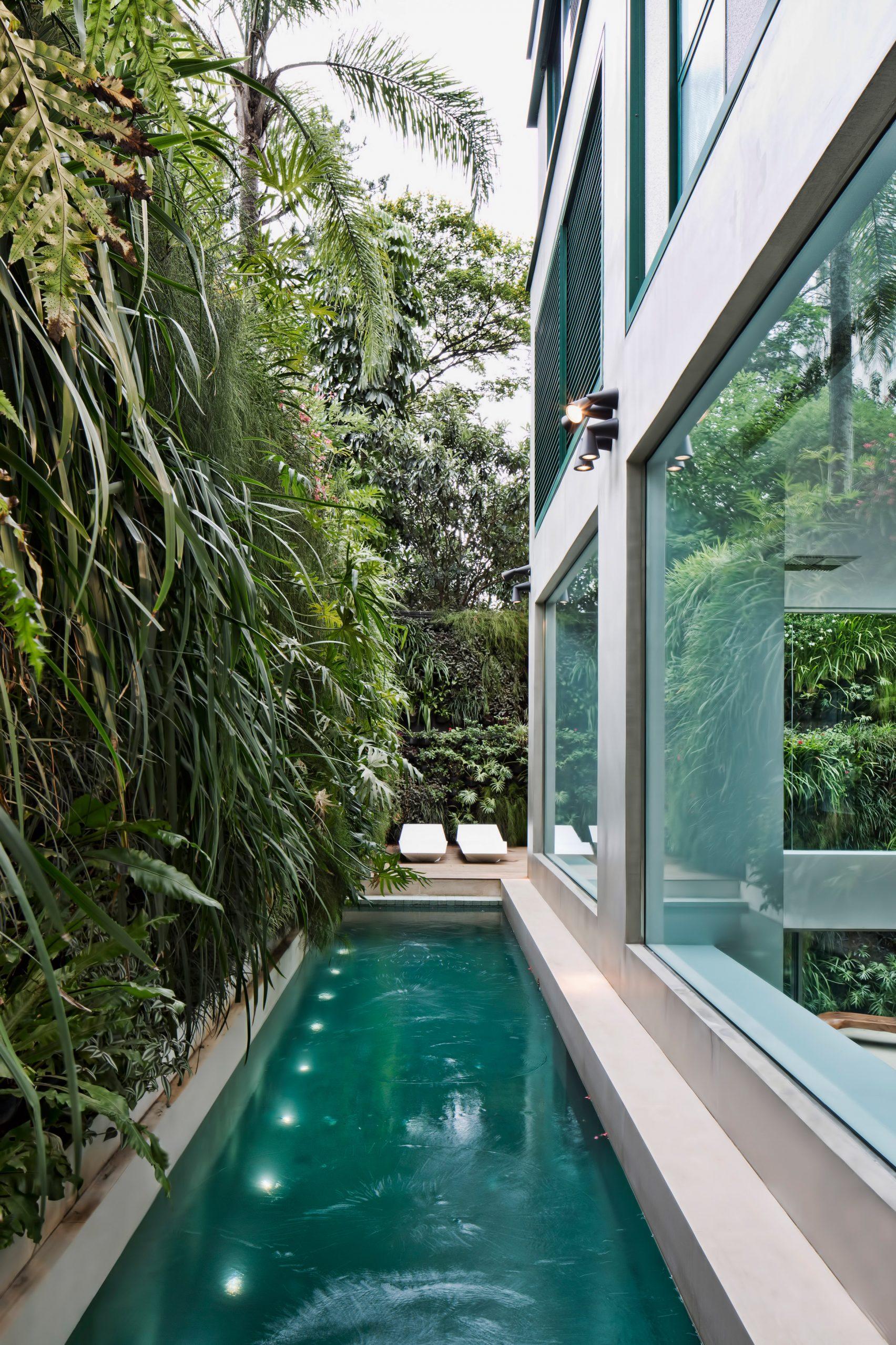 jardim-vertical-quadro-vivo-de-plantas-na-piscina-por-fernanda-marques